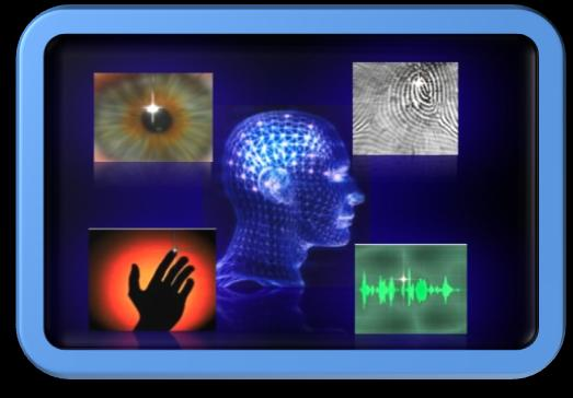 Biometric systems | Coursework Example