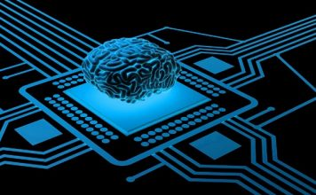 Neurons on Chip