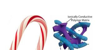 polymer electrode