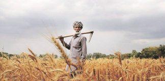 Forsaken Farmer