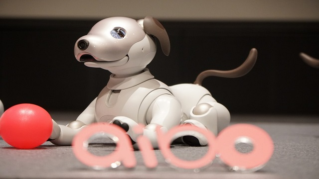 Aibo Robot Dog rejuvenated with Artificial intelligence and Mechatronics