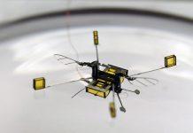 Microbots RoboBee