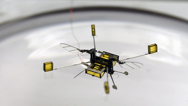 Microbots with modified design can move in water and air