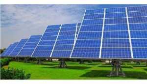 solar plant main