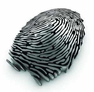 Fingerprint rendering resulting from a 3D scan