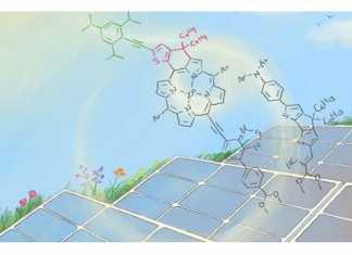 Solar cells_main