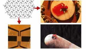 organic-semiconductor
