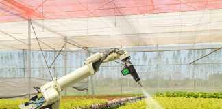 Robots in Farming