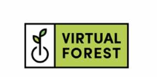 Virtual Forest